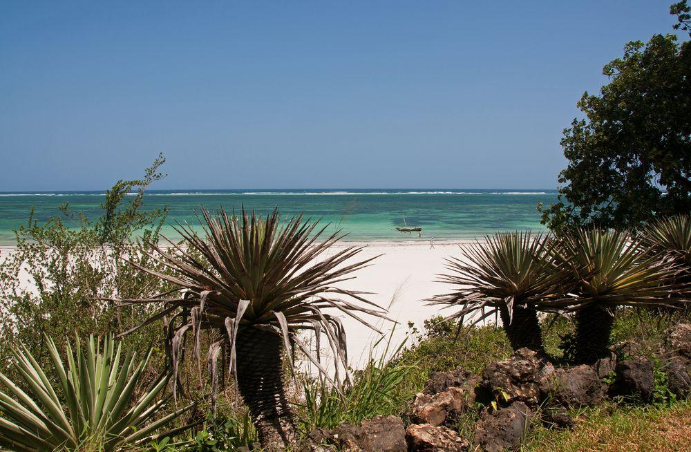 Diani Beach Impressionen ~1~
