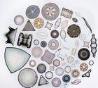 Diatomeen oder Kieselalgen