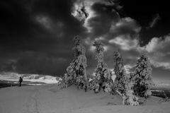 Dicke Schneewolken über dem Gipfel des Lusen...