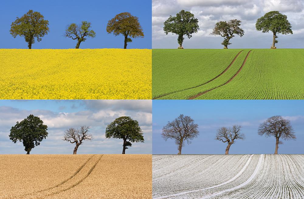 Die 4 Jahreszeiten