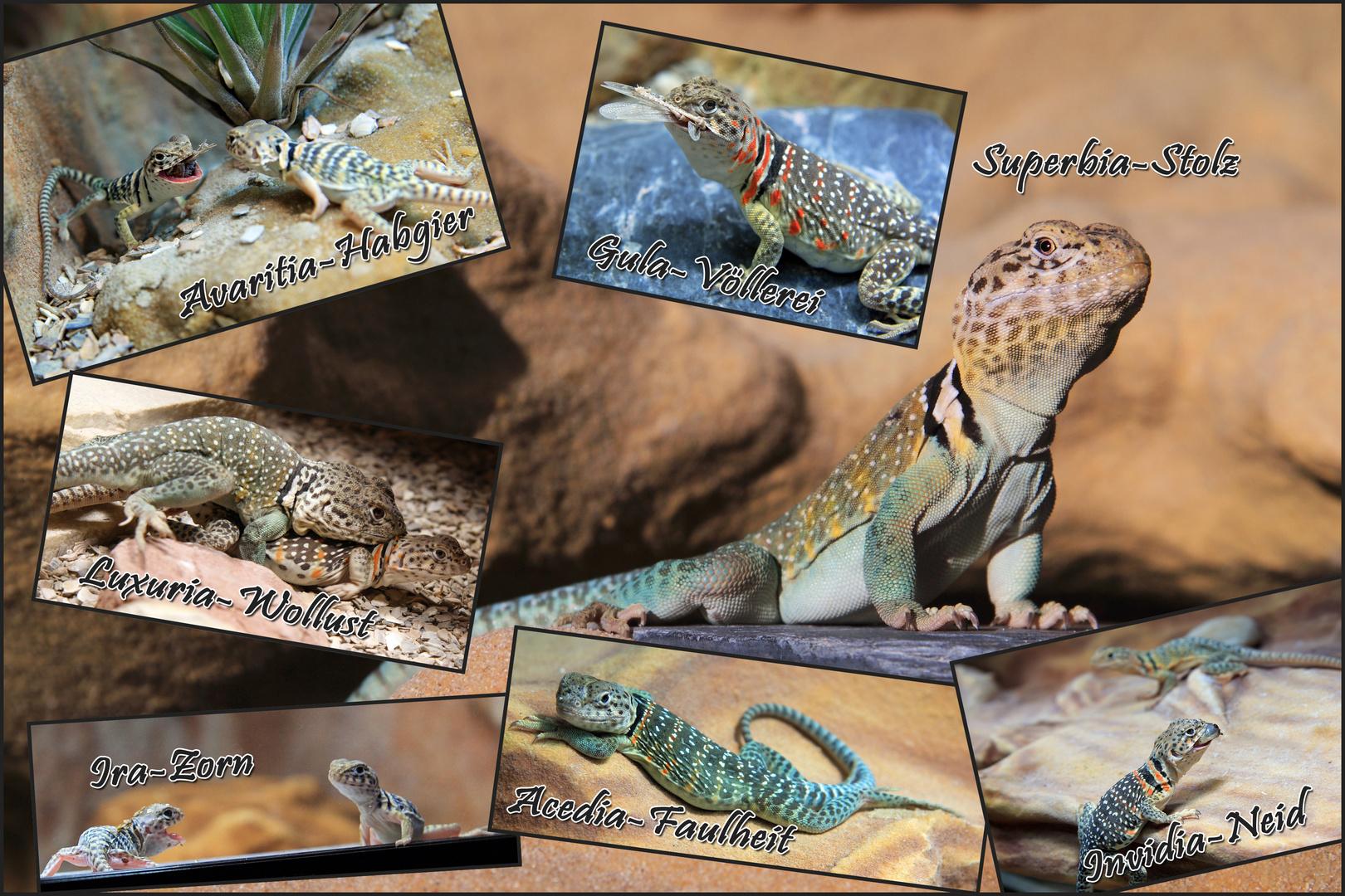 7 Todsünden Tiere