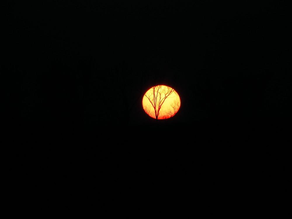 die Ader der Sonne