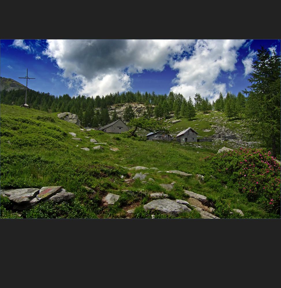 die Alpe Arena