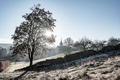 Die alte Klostermauer