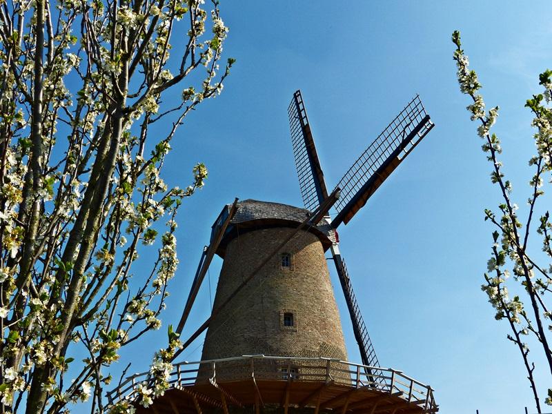 Die alte Mühle !