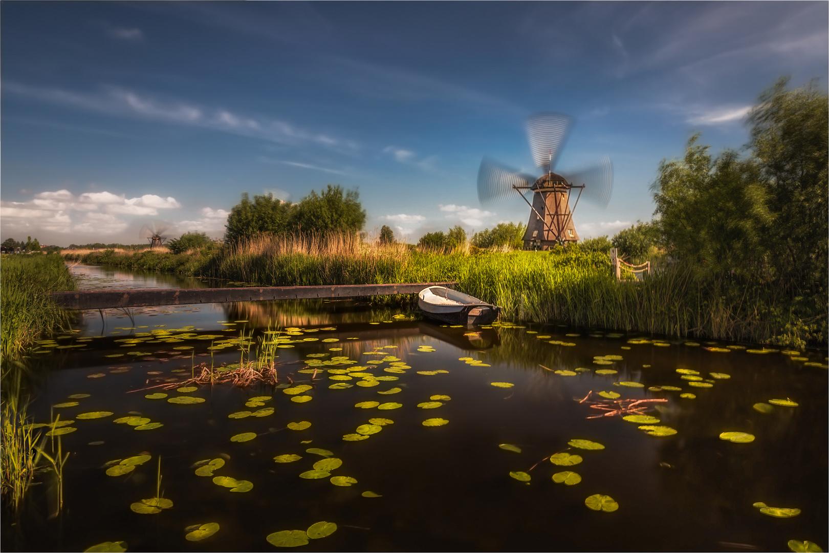 Die alte Mühle und der Wind