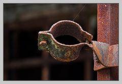 die alte Rohrschelle