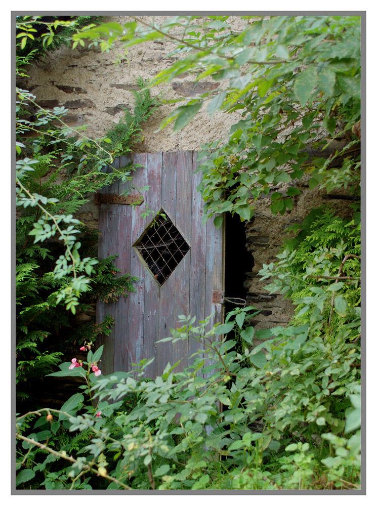 Die alte Türe...