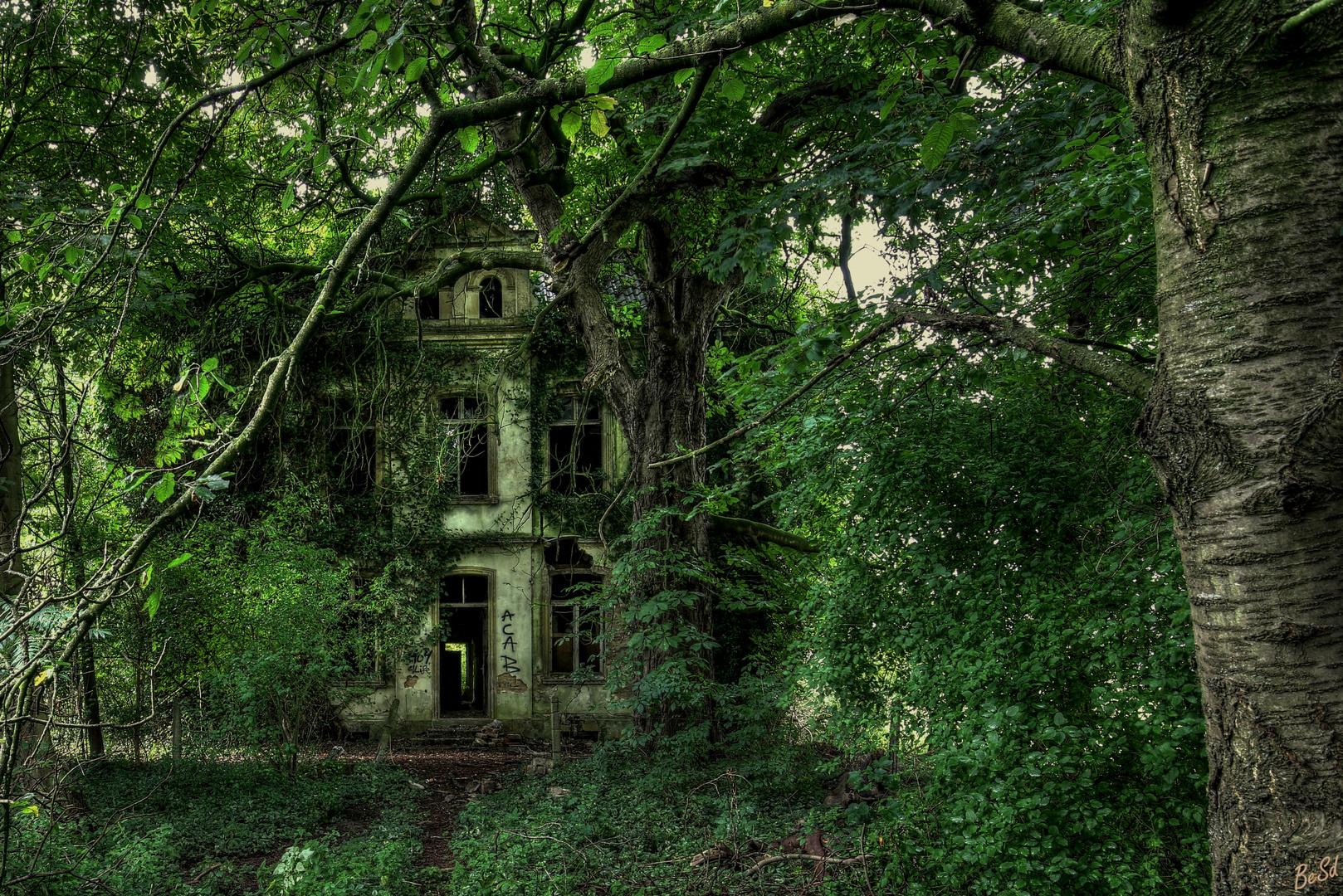 Die alte Villa.....