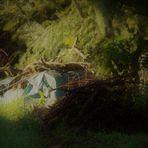die alten Gärten