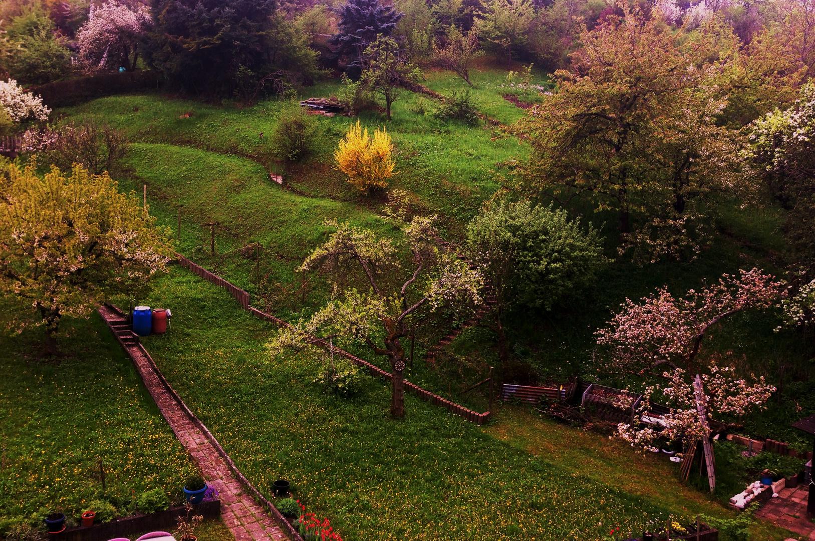die alten Gärten beginnen zu blühen 2