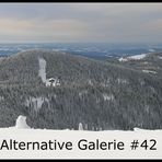 Die alternative Galerie #42 *Geschlossen*