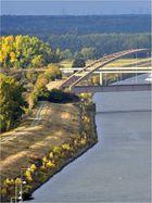 Die Angler am Elbe-Seitenkanal