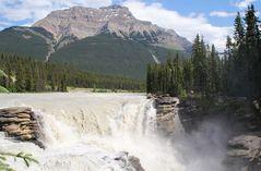 Die Athabasca Falls im Jasper National Park....