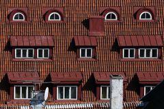 die Augen von Tallinn