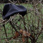Die Baskenmütze