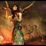 Die Baumfrau