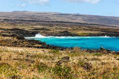 Die baumlose Insel