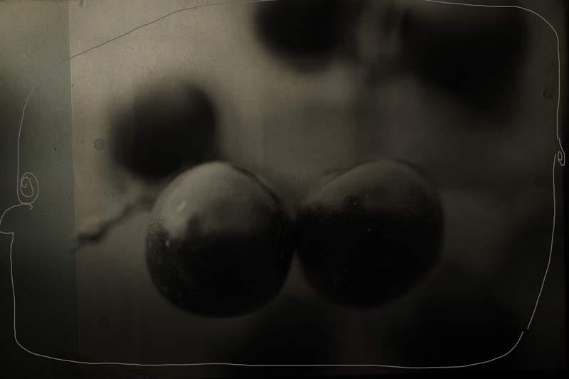 Die Beeren sind los