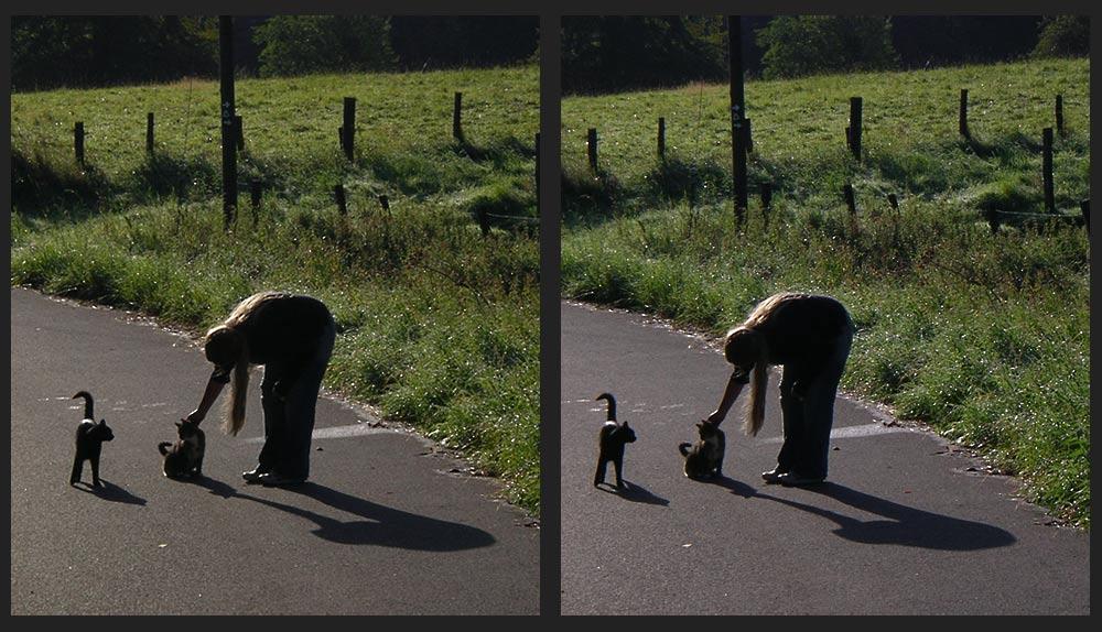 die beiden gehen gerne mit spazieren