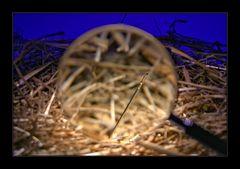 Die berühmte Nadel
