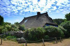 die Besondere Insel Hiddensee