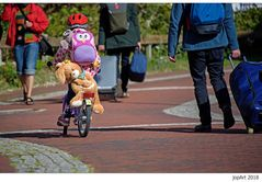 Die Biker kennen das Problem...