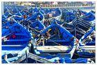 Die blaue Flotte