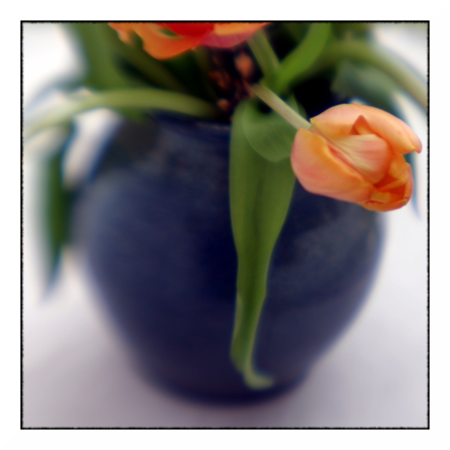 Die blaue Vase 3