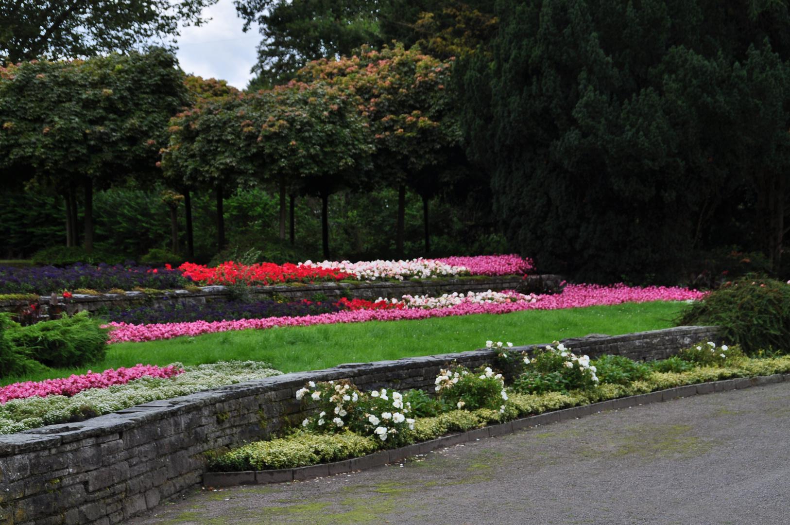 Die Blumen Terasse