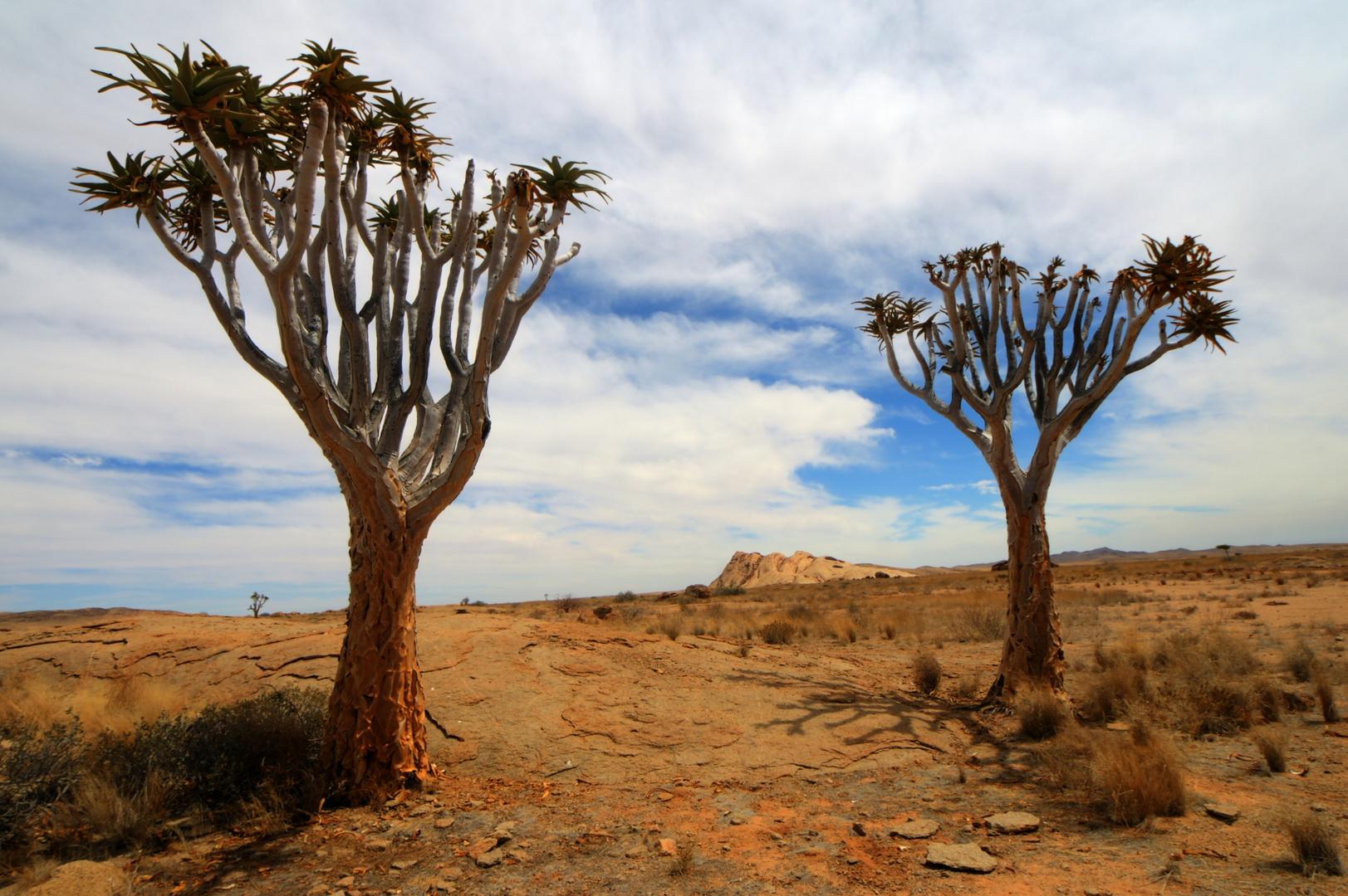 die Blutkuppe in Namibia