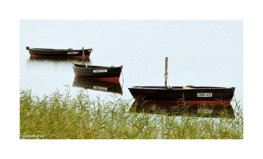 Die Boote von Ummanz