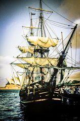 Die Bounty in Sydney