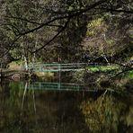 die Brücke die sich spiegelt