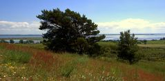 Die bunten Berge von Hiddensee