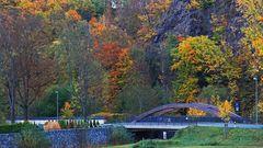 Die bunten Herbstfarben im Müglitztal und die Felsen wollte ich festhalten...