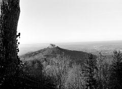 Die Burg Hohenzollern im Nachmittagslicht