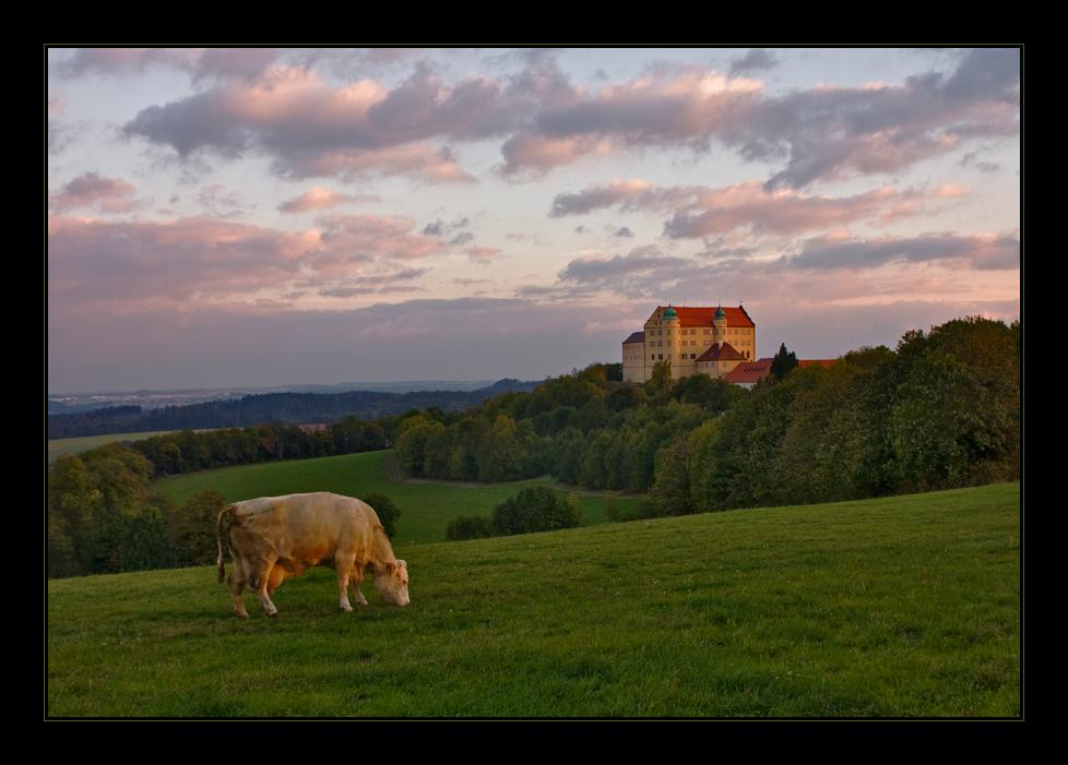 Die Burg im Lichte ihrer gleichmütigen Betrachterin