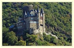 Die Burg Katz am Mittelrhein Rheinland/Pfalz