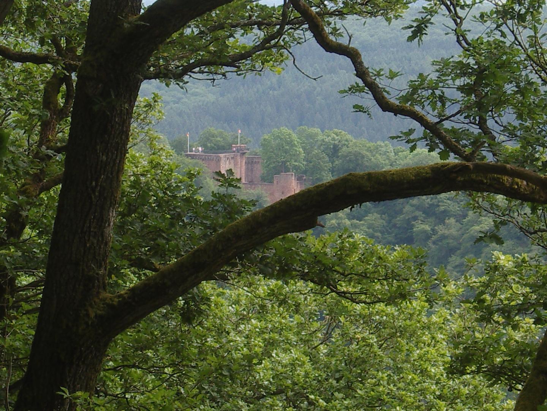 die Burg Montclair bei Mettlach 2