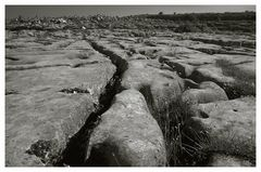 Die Burren