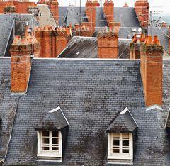 Die Dächer von Blois
