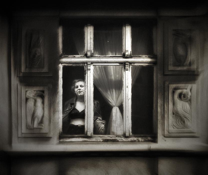 die Dame am Fenster