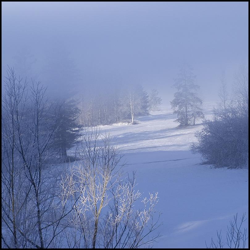 die, die aus dem Nebel kamen