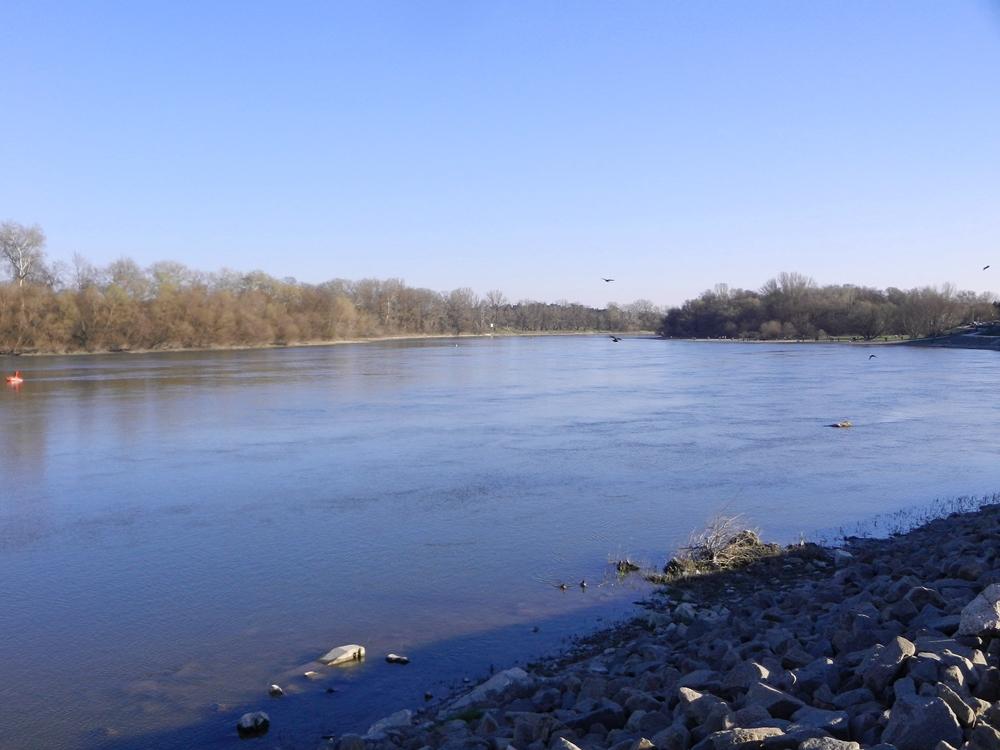 Die Donau heute ( 14.03.2016) bei Szentendre...