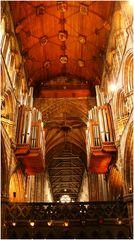 Die doppelte Orgel