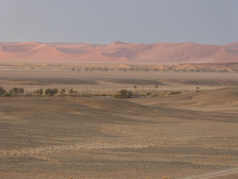 Die Dünen von Sussusvlei, Namibia