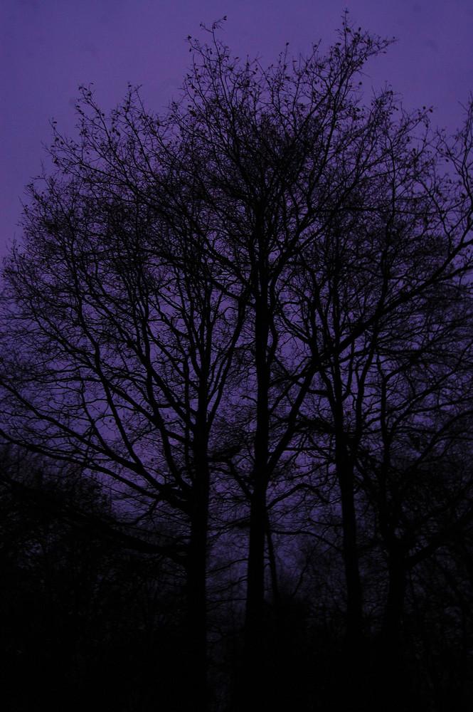 Die Dunkelheit ;)