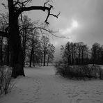 Die dunkle Jahreszeit steht uns bevor...