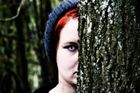 Die dunkle Seite des Waldes